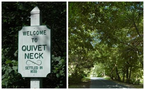 Quivet Neck1